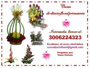 Curso de arreglos florales candelaria valle candelaria for Curso interiorismo gratis